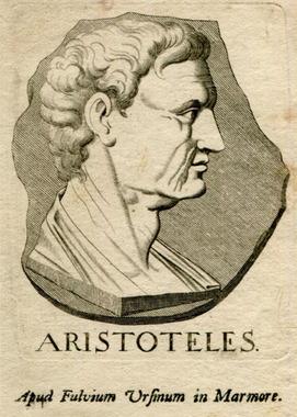 aristotelis 31